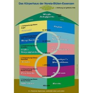 Plakat Noreia Körperhaus